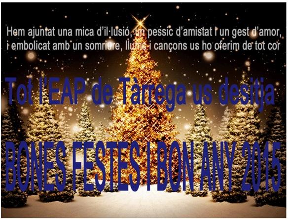 Felicitacio Nadal 2015 (1)